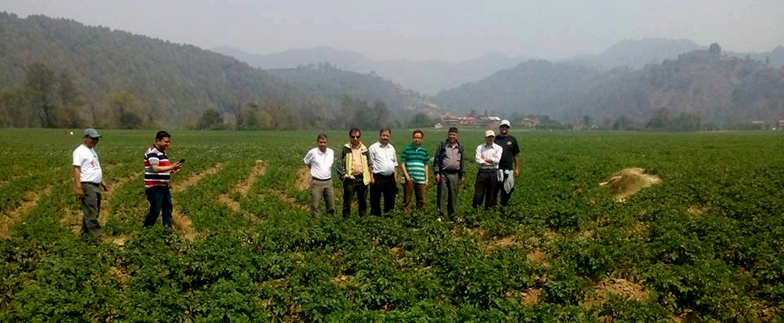 Explore nature and culture in Balthali